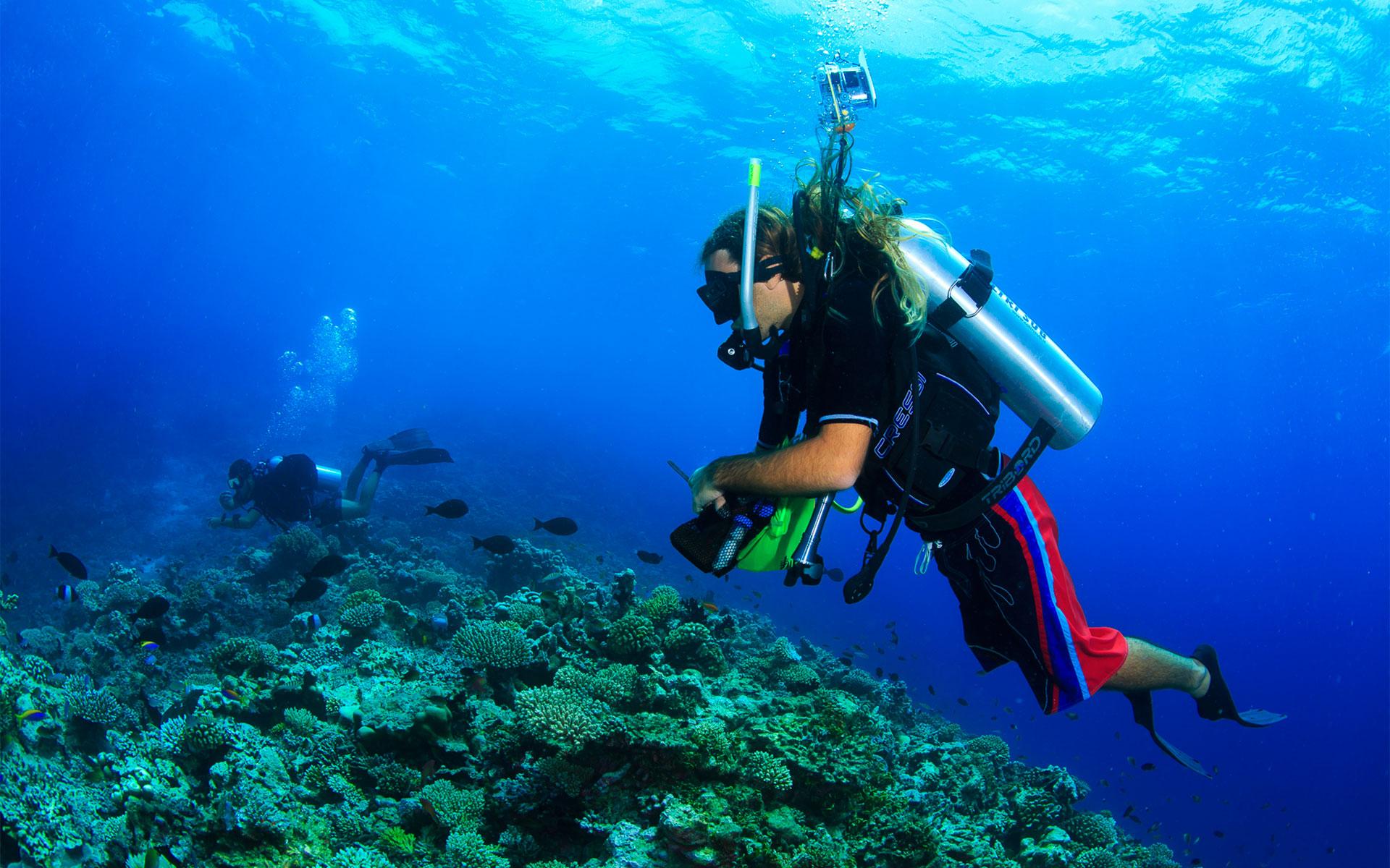 Centre De Plongée Sous Marine Hotel Atoll Ari Sud Diamonds