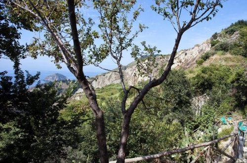 ischia-sorgenti