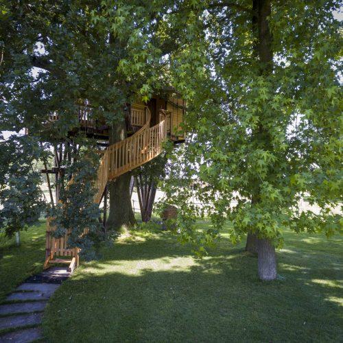 it::Casa sull Albero   en::Tree House   fr::Cabane dans arbre   de::Baumhaus
