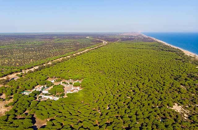 Parques naturales a visitar muy cerca de Sevilla