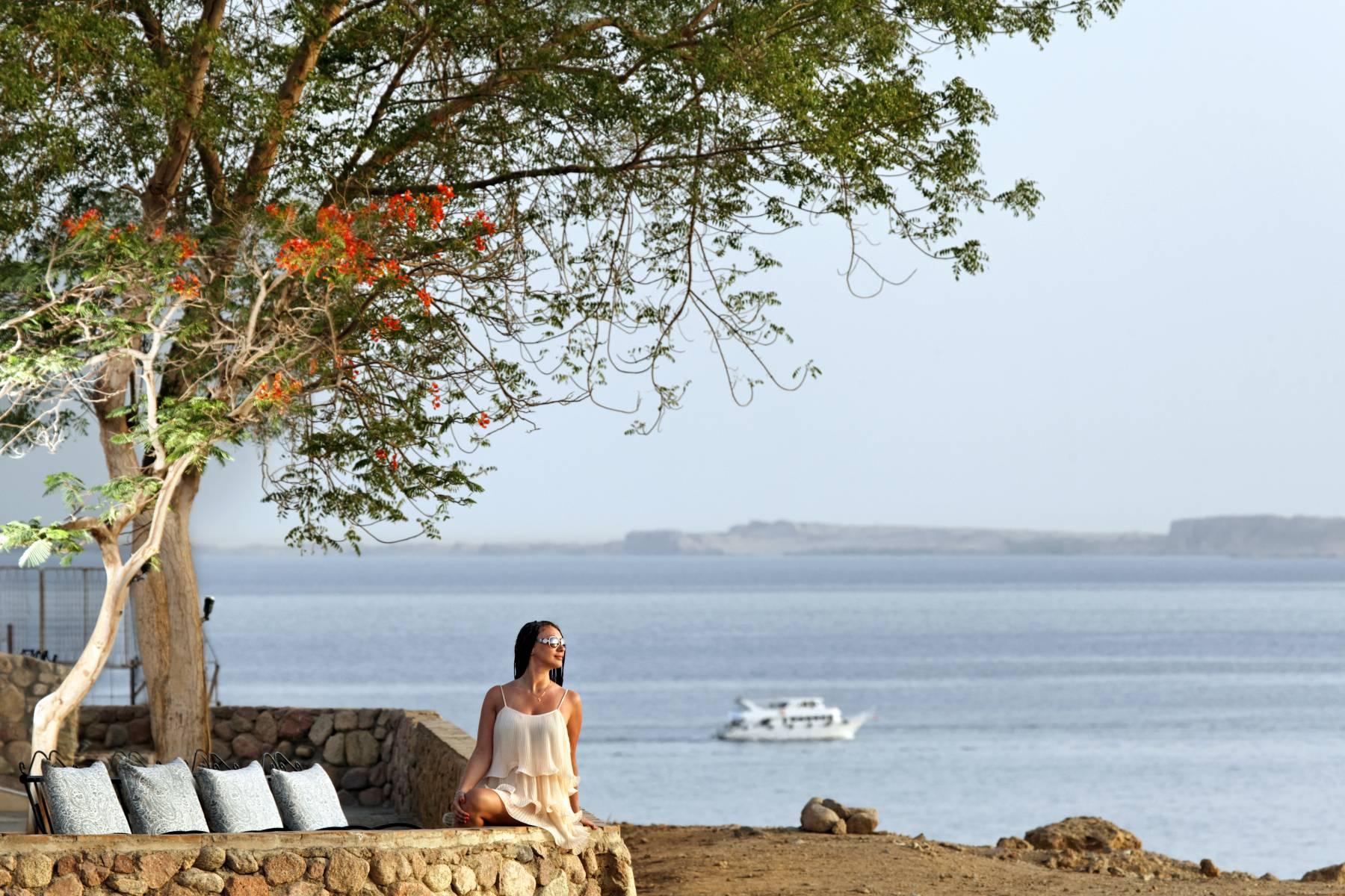 Das Hotel Beach Albatros Resort Sharm El Sheikh Wird In November