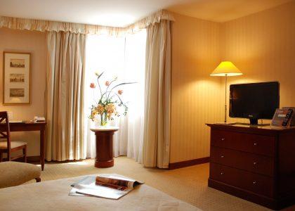 豪華客房 (31 m²)